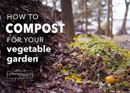 compost garden. how to compost in your vegetable garden