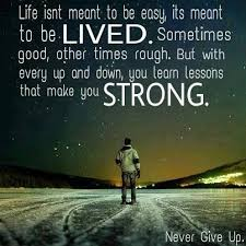 Never Give Up On Life Quotes Magnificent Download Never Give Up On Life Quotes Ryancowan Quotes