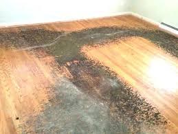 best rug pad for hardwood floors best rug pad for hardwood floors best rug pad for