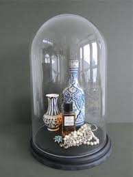glass display dome taxidermy cloche bell jar extra large