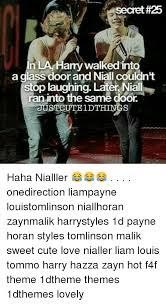 25 n la hamywalkedinto a glass door and niall couldn t stop laughing