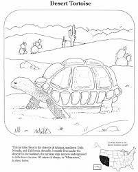 Small Picture Desert Animal Trivia Coloring Coloring Pages