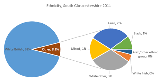 Ethnic Groups In The Uk Population And Protected Characteristics Joint Strategic