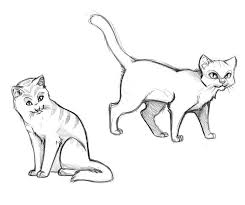 Realistic Cat Coloring Pages Mped Free Printable Cat Coloring Pages