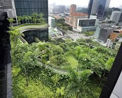 9 breathtaking rooftop gardens around