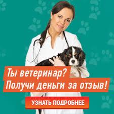 <b>Корм Primordial</b> для кошек - отзывы ветеринаров и владельцев ...