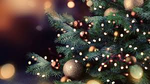 Downtown Raleigh Christmas Lights Downtown Raleigh Tree Lighting Celebration 2019 Abc11 Com