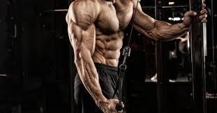 eat big to get big breaking muscle