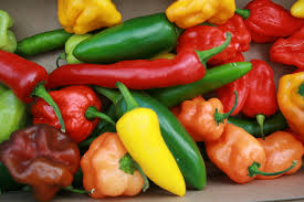 Image result for mixed chillies
