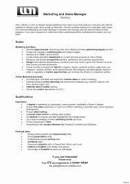 Sample Resume International Marketing Manager Inspirationa Sales