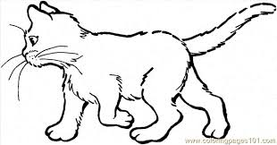 Small Picture 89 Cat 20 Coloring Page Coloring Page Free Cat Coloring Pages
