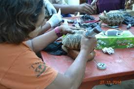 Indian Star Tortoise Diet Chart Star Tortoise Reintroduction Progressing Well In Myanmar