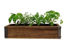 indoor herb garden kit. Indoor Herb Garden Kit R
