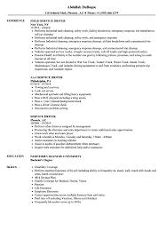 Driver Resume Examples Service Driver Resume Samples Velvet Jobs 14