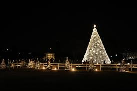 National <b>Christmas Tree</b> Lighting: Home Page