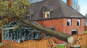 My neighbour\u0027s tree fell and caused damage. Is he liable?
