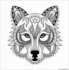 Lovely Jaguar Animal Coloring Pages Exadme