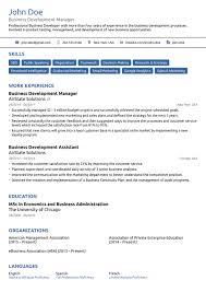 Basic Resume Template Professional 4 Medmoryapp Com