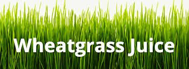 Wheatgrass Juice Vegus Juices