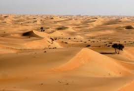 Image result for dubai sand dunes