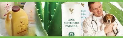 Bildresultat för aloe vera för djur