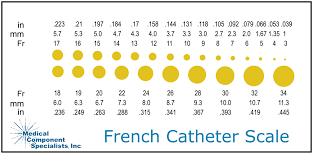 French Size Chart Catheter Catheter Chart Usdchfchart Com