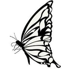 24 件のおすすめ画像ボードアゲハ蝶2017 アゲハ蝶蝶蝶々