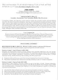 Senior Business Analyst Resume Example Data Analyst Resume Sample