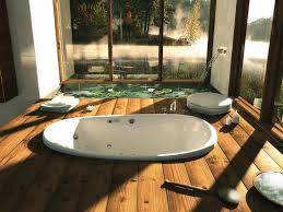 Bathroom Designs: Built In Bathtub - Modern Bathroom