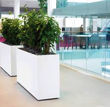 office planter. white office planter by ambius uk c