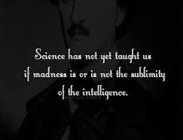 Edgar Allan Poe Life Quotes Classy The Wisdom Of Edgar Allen Poe Edgar Allen Poe Wisdom And Mental