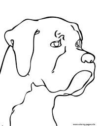 Small Picture Dog Head S37dc Coloring Pages Printable