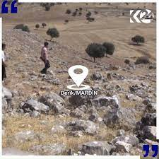 Metina Aşireti - Mardin Derik Göktaş (kevırşin) köyünde...
