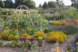 Walled Kitchen Garden Wimpole Hall And The Walled Kitchen Garden Gardening Jules