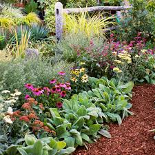 Small Picture 4 Easy Care Flower Bed Ideas Sunset