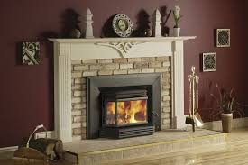 wood fireplace insert with er image of