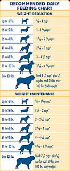 Staffy Weight Chart Dog Obesity Chart Average Weight Of