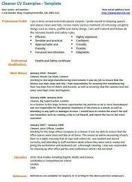 house cleaning resume house - Cleaning Resume Sample
