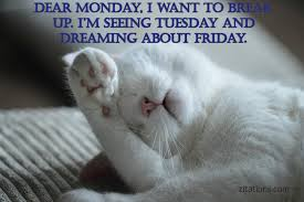 Monday Morning Quotes New Funny Monday Morning Quotes To Cure The Monday Blues Zitations