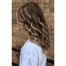 Hairstyles Black And Dark Brown Hair Remarkable Fructis