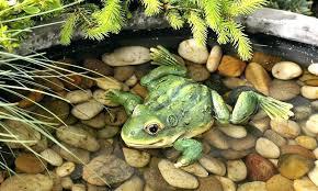 outdoor frog statues giant garden frog statue medium size of frog statue outdoor frog statues large