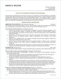 Technical Recruiter Resume Delectable Executive Resume Samples 48 Elegant Download Executive Recruiter