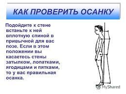Правильная осанка в рисованном виде Упражнения для осанки грудного отдела