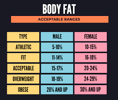 Men S Body Fat Chart How Fast Can I Get The Body I Want