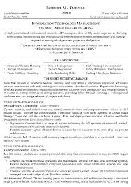 Information Technology Resume Template Management Example It Sample