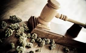 hightimes cannabiz news mom charged for treating her daughter s seizures marijuana butter