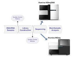 Illumina Sequencing Flow Chart Next Generation Sequencing Translational Genomics Core