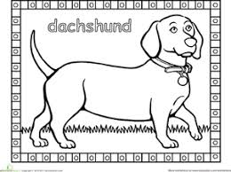 Kindergarten Coloring Worksheets Dachshund Coloring Page Dachshund