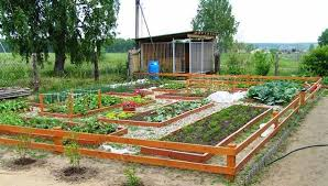 Small Picture Vegetable Garden Design erikhanseninfo
