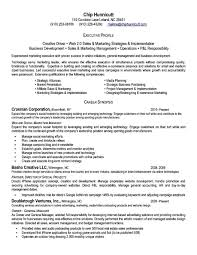 Executive Level Resume Templates Executive Level Resume Templates Savebtsaco 3